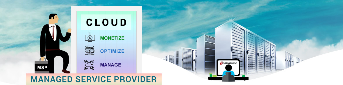 Managed Service Providers (MSPs)